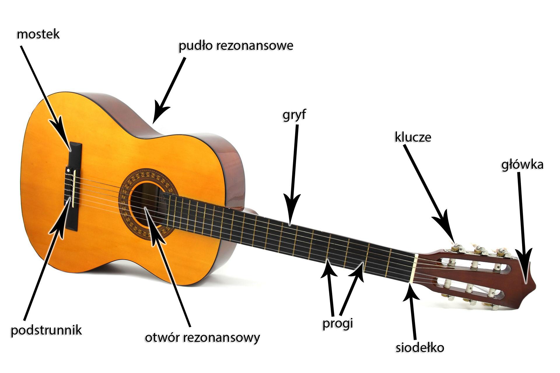 Budowa gitary - części gitary